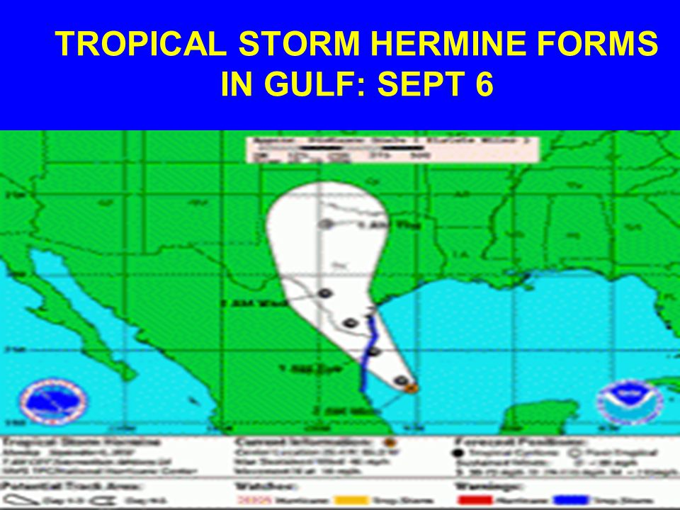 TROPICAL STORM HERMINE FORMS IN GULF: SEPT 6