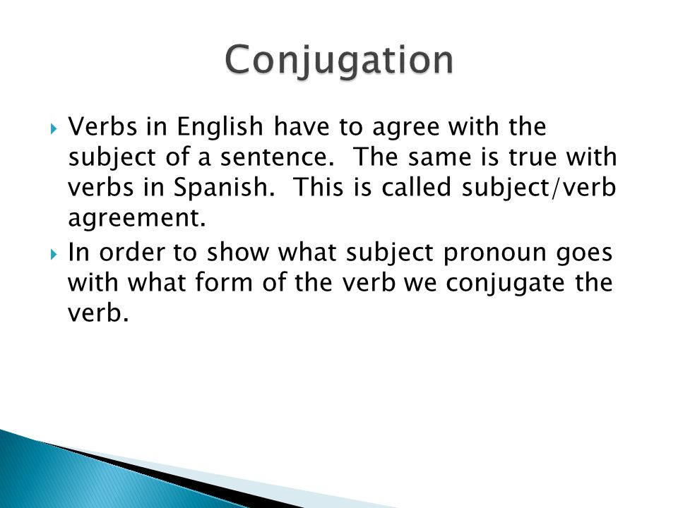  Verbs in English have to agree with the subject of a sentence.