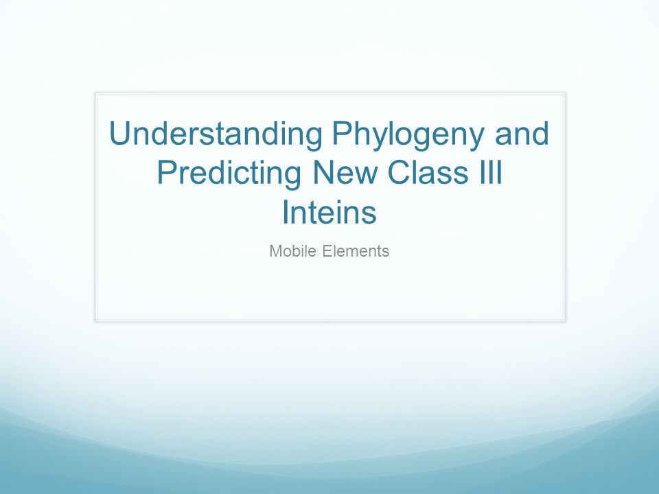 Understanding Phylogeny and Predicting New Class III Inteins Mobile Elements