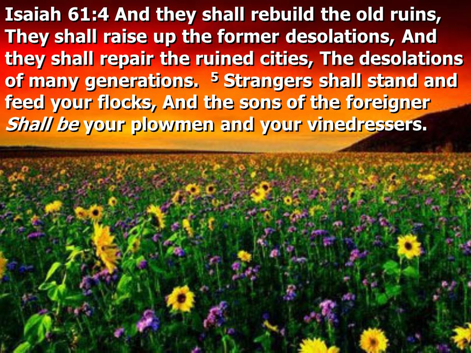 Isaiah 61:4 And they shall rebuild the old ruins, They shall raise up the former desolations, And they shall repair the ruined cities, The desolations of many generations.