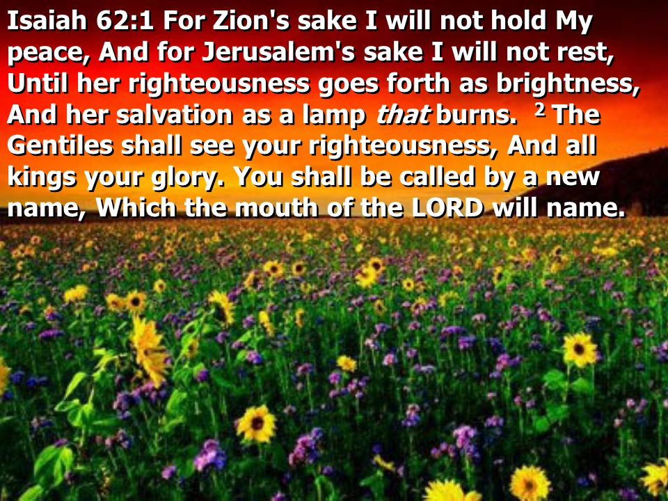 Isaiah 62:1 For Zion s sake I will not hold My peace, And for Jerusalem s sake I will not rest, Until her righteousness goes forth as brightness, And her salvation as a lamp that burns.