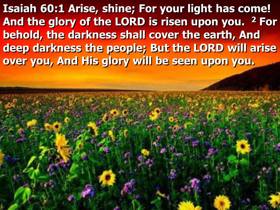 Isaiah 60:1 Arise, shine; For your light has come.