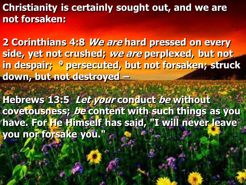 Christianity is certainly sought out, and we are not forsaken: 2 Corinthians 4:8 We are hard pressed on every side, yet not crushed; we are perplexed, but not in despair; 9 persecuted, but not forsaken; struck down, but not destroyed – Hebrews 13:5 Let your conduct be without covetousness; be content with such things as you have.