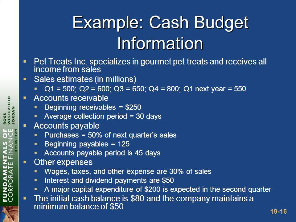 19-16 Example: Cash Budget Information  Pet Treats Inc.