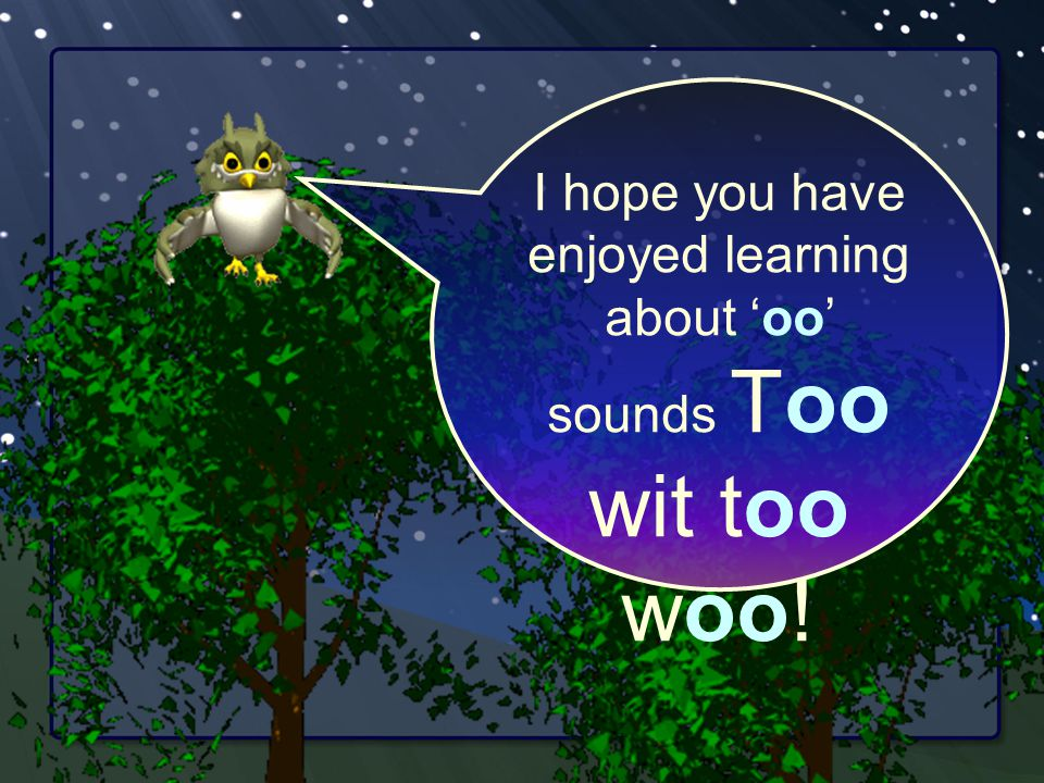 I hope you have enjoyed learning about 'oo' sounds Too wit too woo!