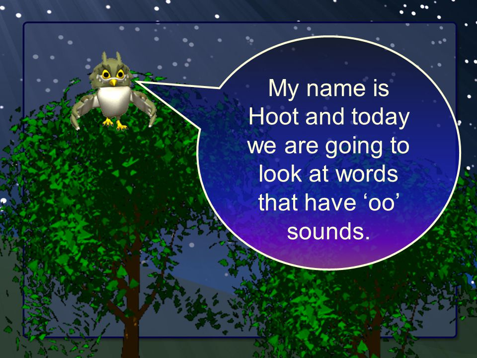 My name is Hoot and today we are going to look at words that have 'oo' sounds.