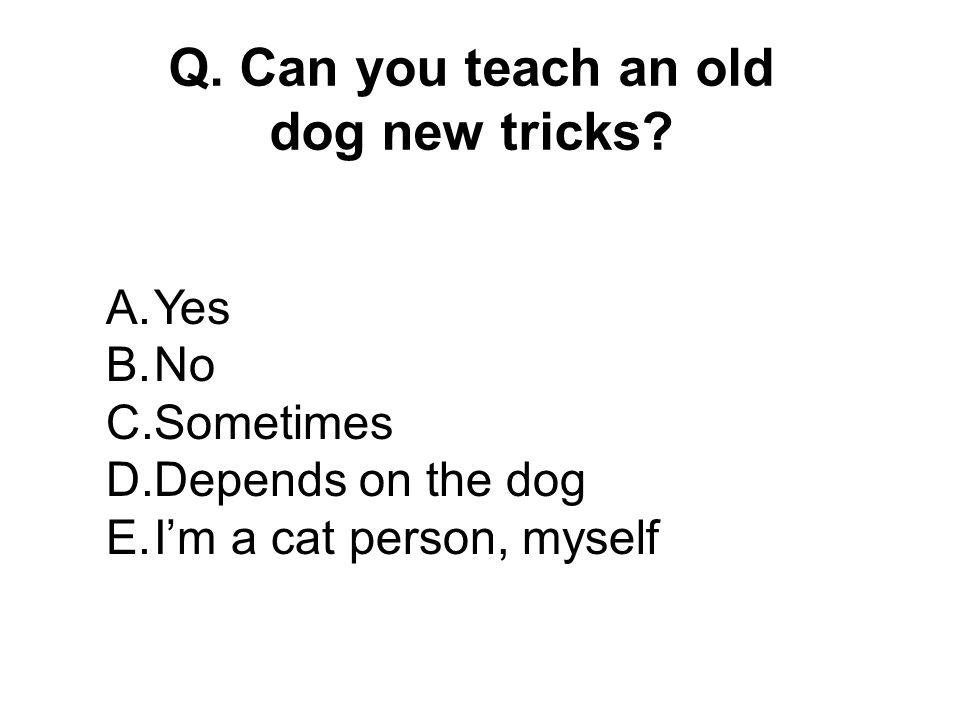 Q.Can you teach an old dog new tricks.