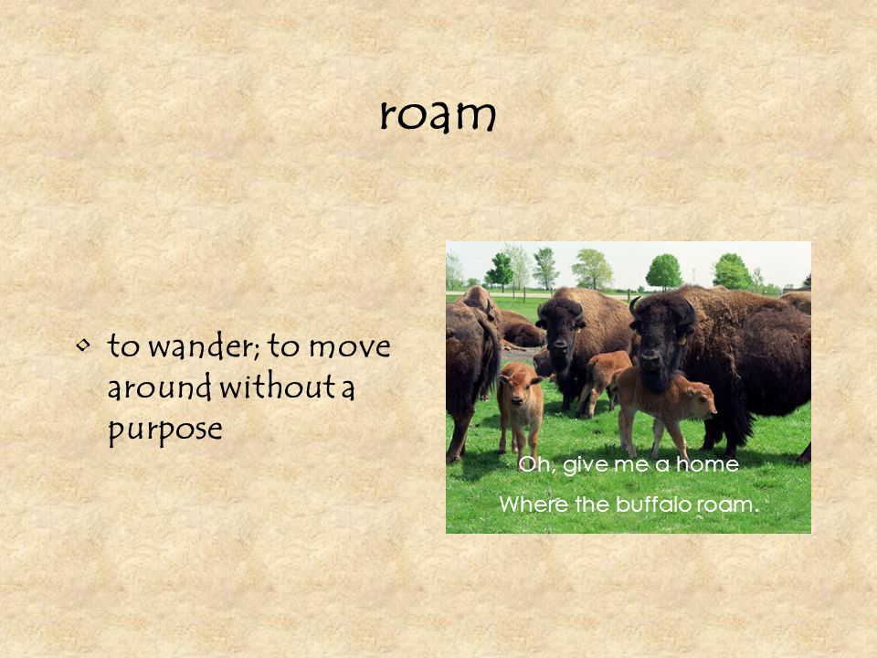 roam to wander; to move around without a purpose Oh, give me a home Where the buffalo roam.