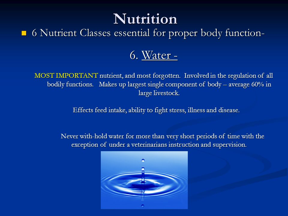 Nutrition 6 Nutrient Classes essential for proper body function- 6 Nutrient Classes essential for proper body function- 6.