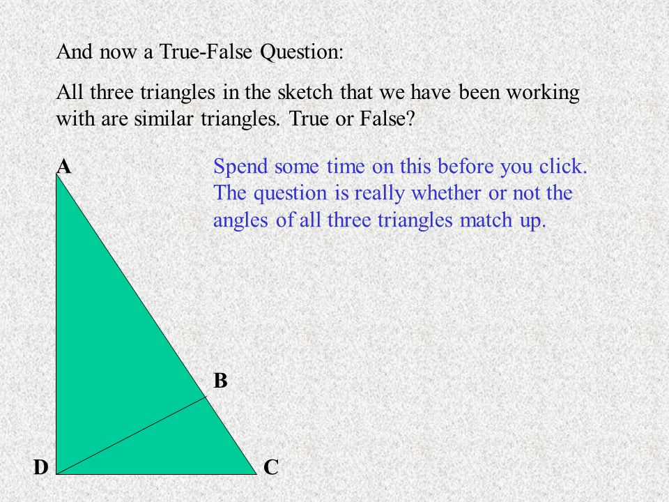 A B CD And now a True-False Question: All three triangles in the sketch that we have been working with are similar triangles.