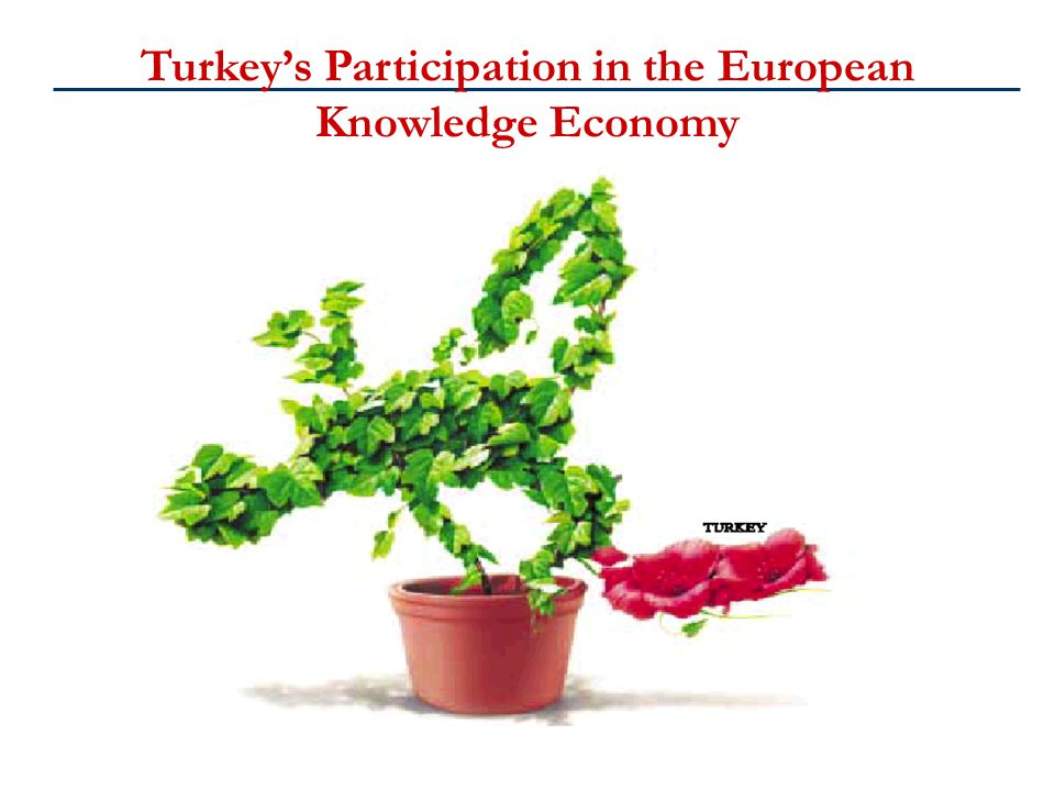 Turkey's Participation in the European Knowledge Economy