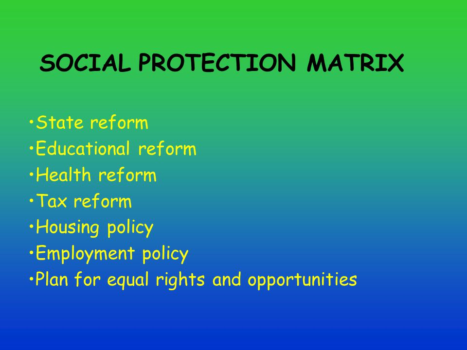 SOCIAL PROTECTION MATRIX State reform Educational reform Health reform Tax reform Housing policy Employment policy Plan for equal rights and opportunities