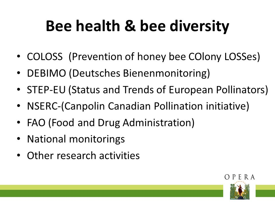 Bee health & bee diversity COLOSS (Prevention of honey bee COlony LOSSes) DEBIMO (Deutsches Bienenmonitoring) STEP-EU (Status and Trends of European P