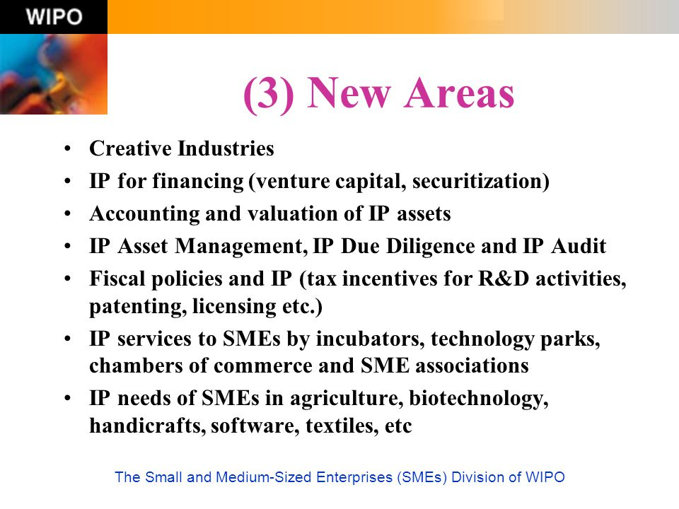 The Small and Medium-Sized Enterprises (SMEs) Division of WIPO (3) New Areas Creative Industries IP for financing (venture capital, securitization) Ac