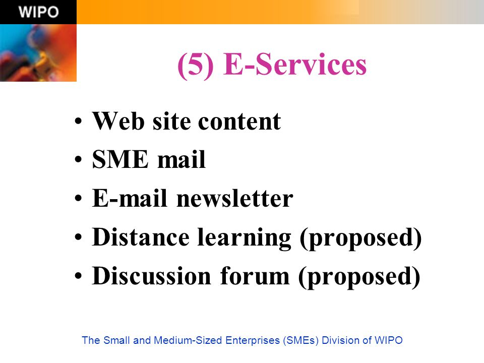 The Small and Medium-Sized Enterprises (SMEs) Division of WIPO (5) E-Services Web site content SME mail E-mail newsletter Distance learning (proposed)