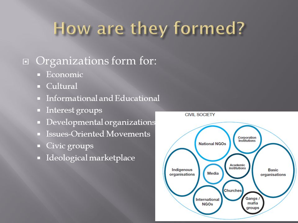  Organizations form for:  Economic  Cultural  Informational and Educational  Interest groups  Developmental organizations  Issues-Oriented Movements  Civic groups  Ideological marketplace