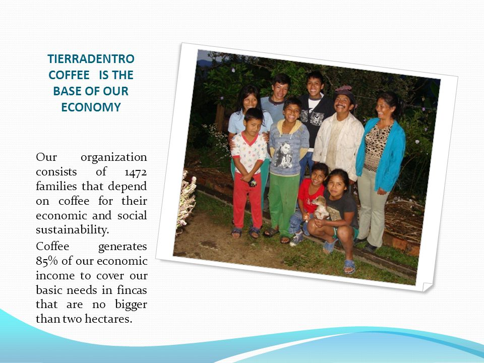 TIERRADENTRO COFFEE IS THE BASE OF OUR ECONOMY Our organization consists of 1472 families that depend on coffee for their economic and social sustainability.