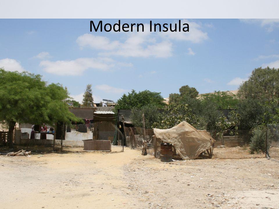 Modern Insula