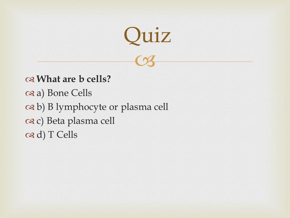   What are b cells?  a) Bone Cells  b) B lymphocyte or plasma cell  c) Beta plasma cell  d) T Cells Quiz