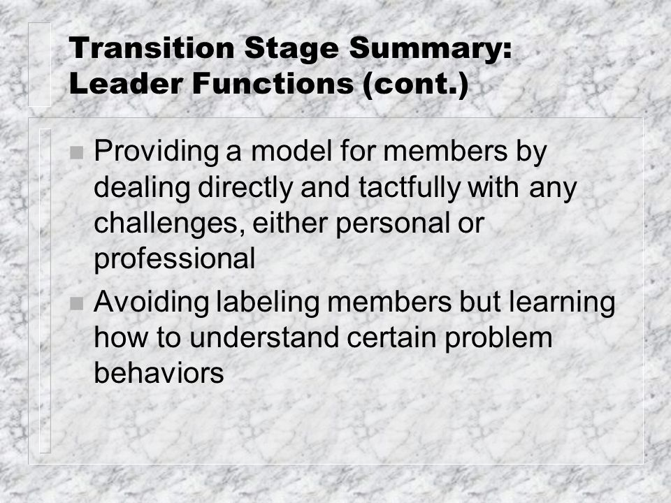 Transition Stage Summary: Leader Functions (cont.) n Providing a model for members by dealing directly and tactfully with any challenges, either perso