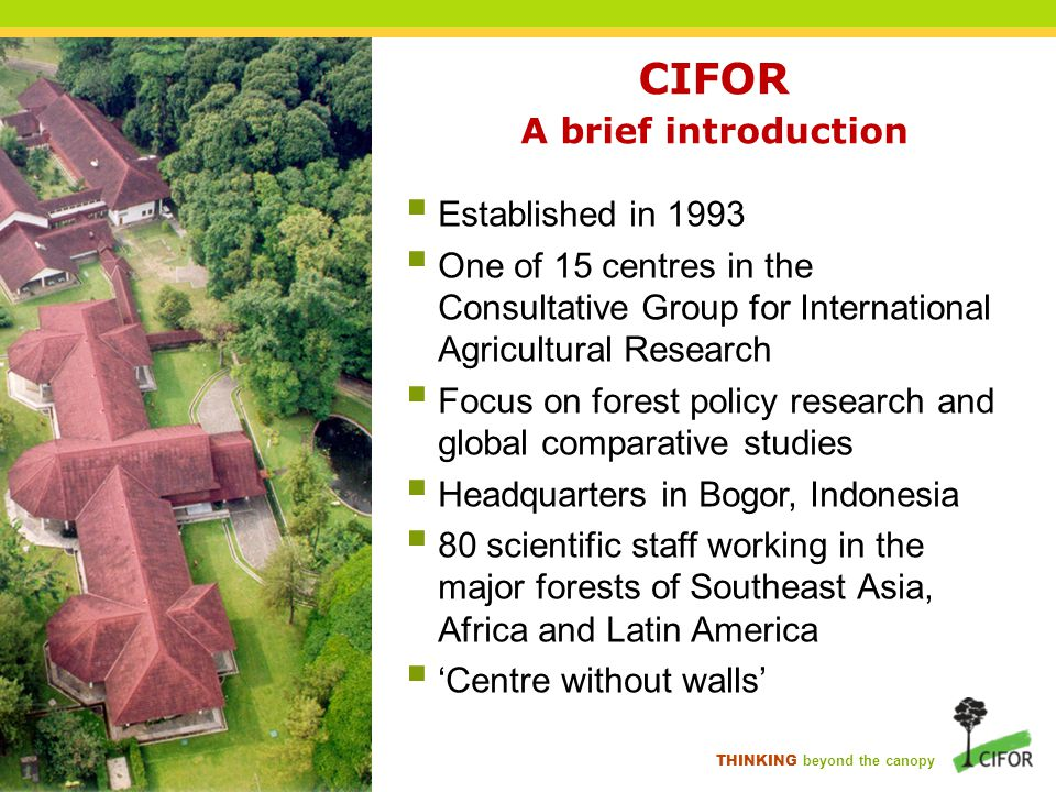 THINKING beyond the canopy Our research strategy 1 Enhancing the role of forests in mitigating climate change Enhancing the role of forests in adapting to climate change 2 Improving livelihoods through smallholder and community forestry 3 Managing trade-offs between conservation and development at the landscape scale 4 Managing impacts of globalised trade and investment on forests and forest communities 5 Sustainably managing tropical production forests 6
