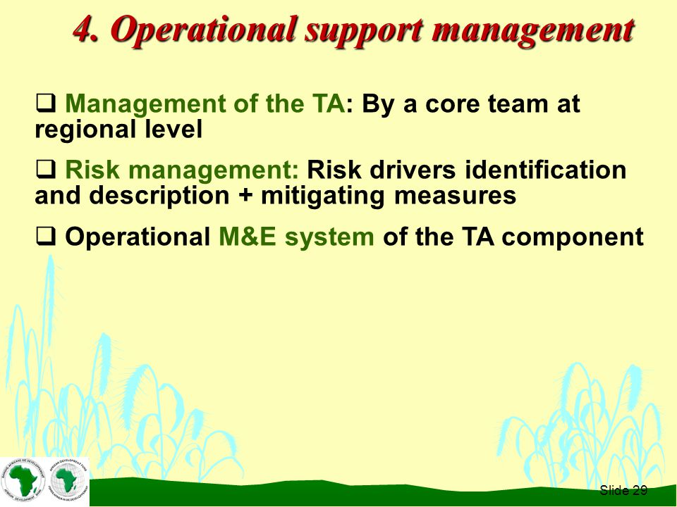  Management of the TA: By a core team at regional level  Risk management: Risk drivers identification and description + mitigating measures  Operational M&E system of the TA component Slide 29 4.