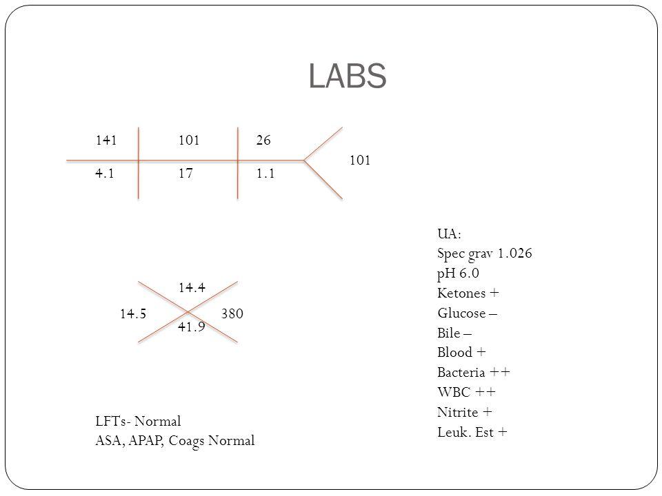 LABS 141 4.1 101 26 17 1.1 101 14.5 380 14.4 41.9 UA: Spec grav 1.026 pH 6.0 Ketones + Glucose – Bile – Blood + Bacteria ++ WBC ++ Nitrite + Leuk. Est