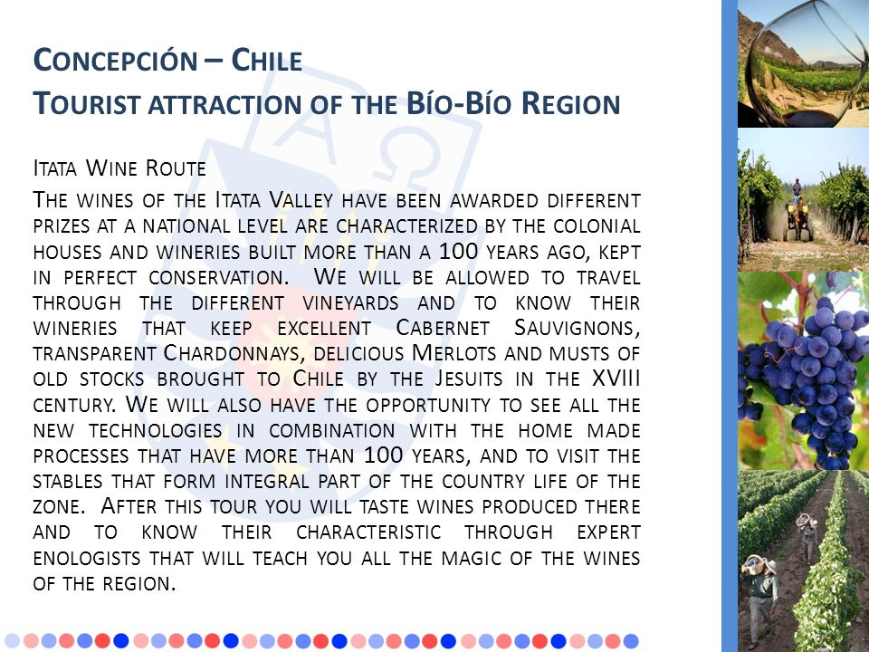 C ONCEPCIÓN – C HILE T OURIST ATTRACTION OF THE B ÍO -B ÍO R EGION I TATA W INE R OUTE T HE WINES OF THE I TATA V ALLEY HAVE BEEN AWARDED DIFFERENT PRIZES AT A NATIONAL LEVEL ARE CHARACTERIZED BY THE COLONIAL HOUSES AND WINERIES BUILT MORE THAN A 100 YEARS AGO, KEPT IN PERFECT CONSERVATION.