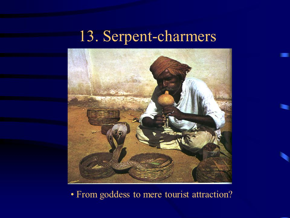 13. Serpent-charmers From goddess to mere tourist attraction