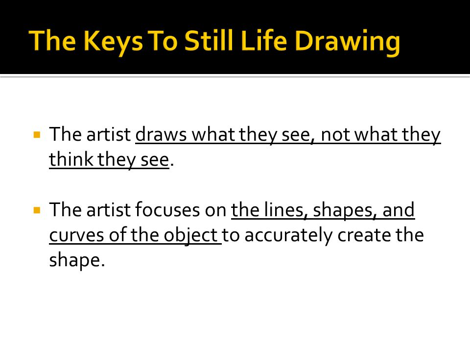  The artist draws what they see, not what they think they see.