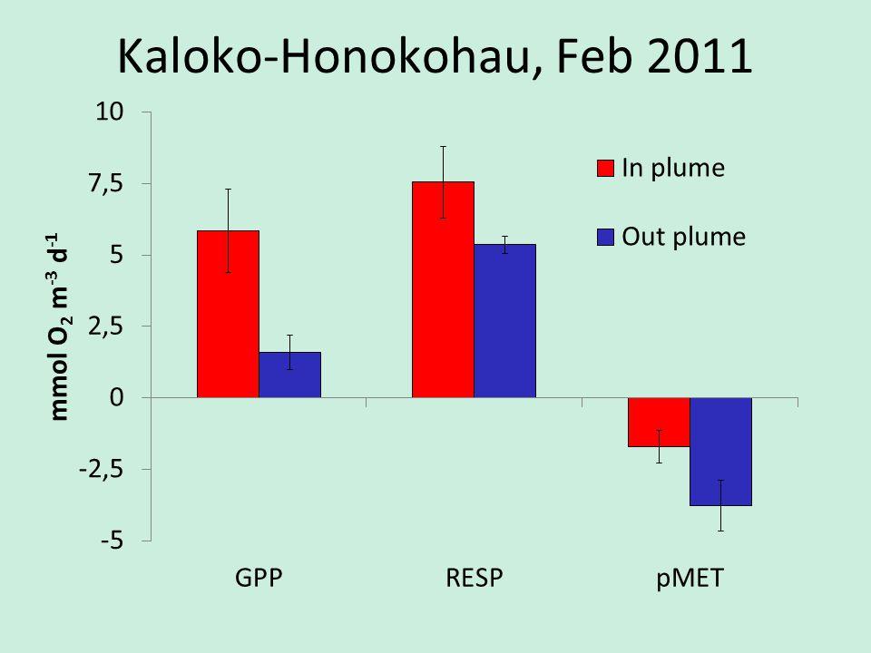 Kaloko-Honokohau, Feb 2011