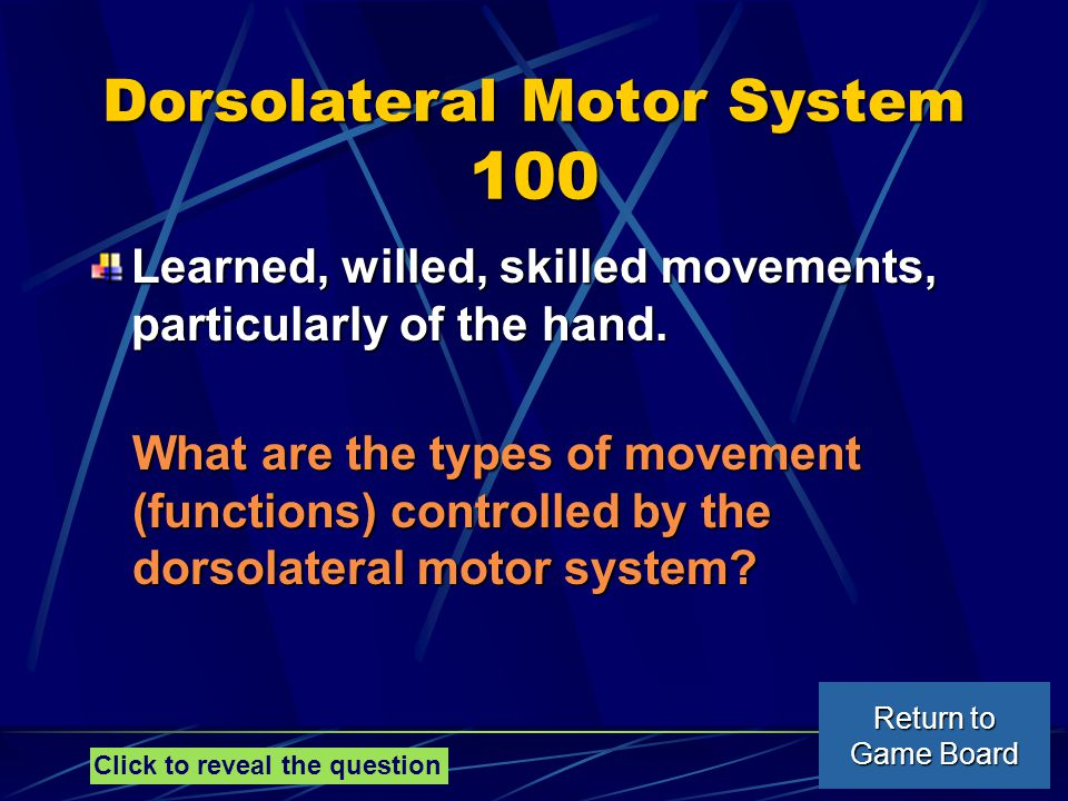 Dorsolateral Motor System 100 Learned, willed, skilled movements, particularly of the hand.