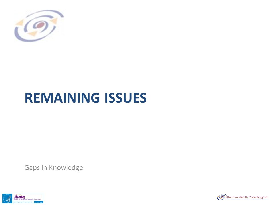 REMAINING ISSUES Gaps in Knowledge