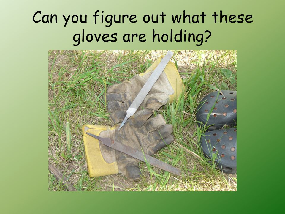 Can you figure out what these gloves are holding