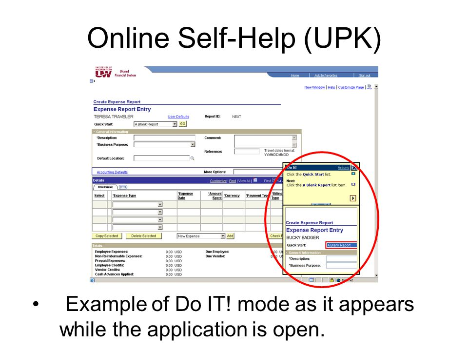 Online Self-Help (UPK) Example of Do IT! mode as it appears while the application is open.