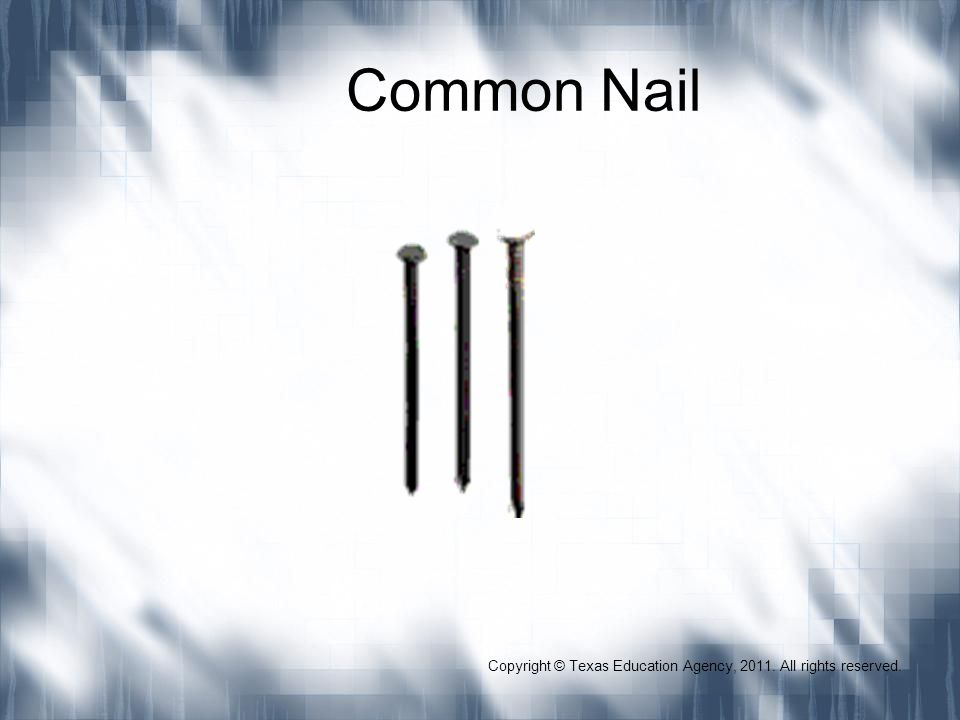Common Nail Copyright © Texas Education Agency, 2011. All rights reserved.