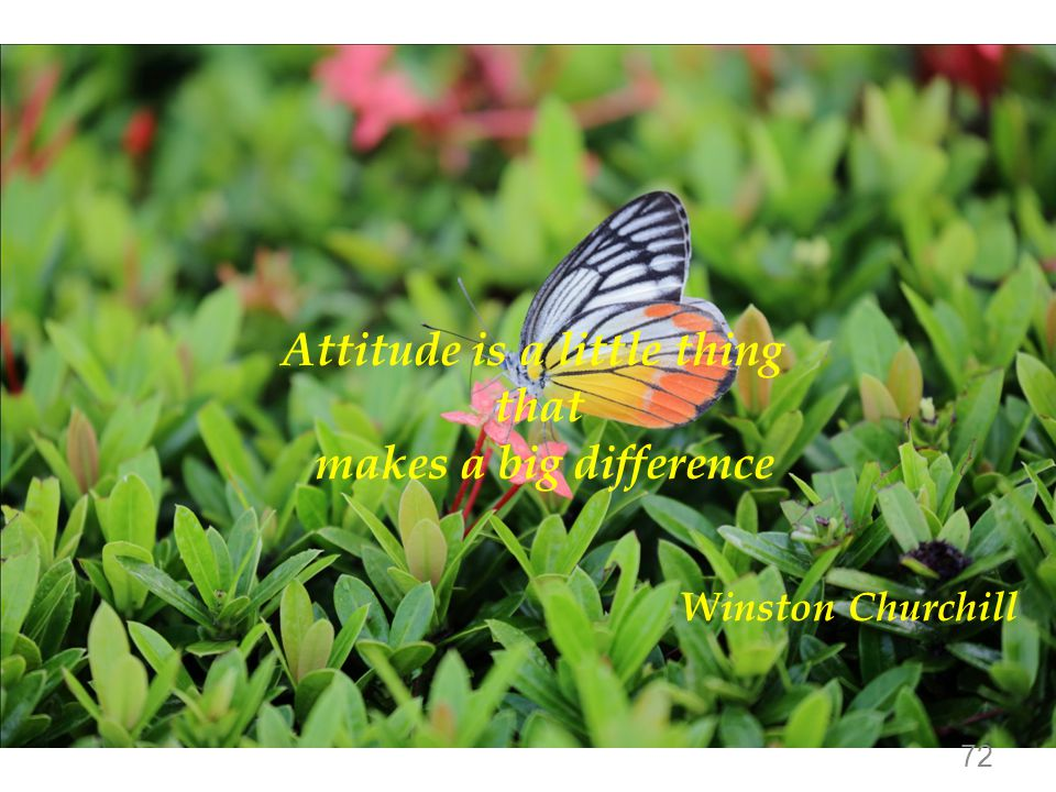 Attitude is a little thing that makes a big difference Winston Churchill 72