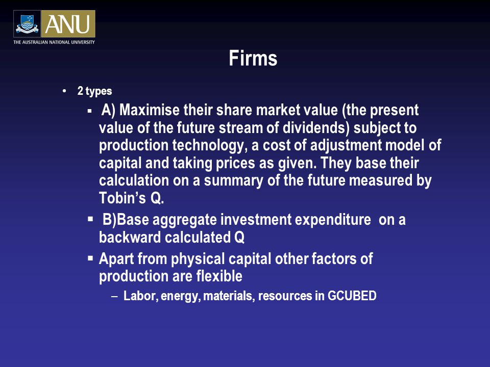 Firms 2 types  A) Maximise their share market value (the present value of the future stream of dividends) subject to production technology, a cost of adjustment model of capital and taking prices as given.