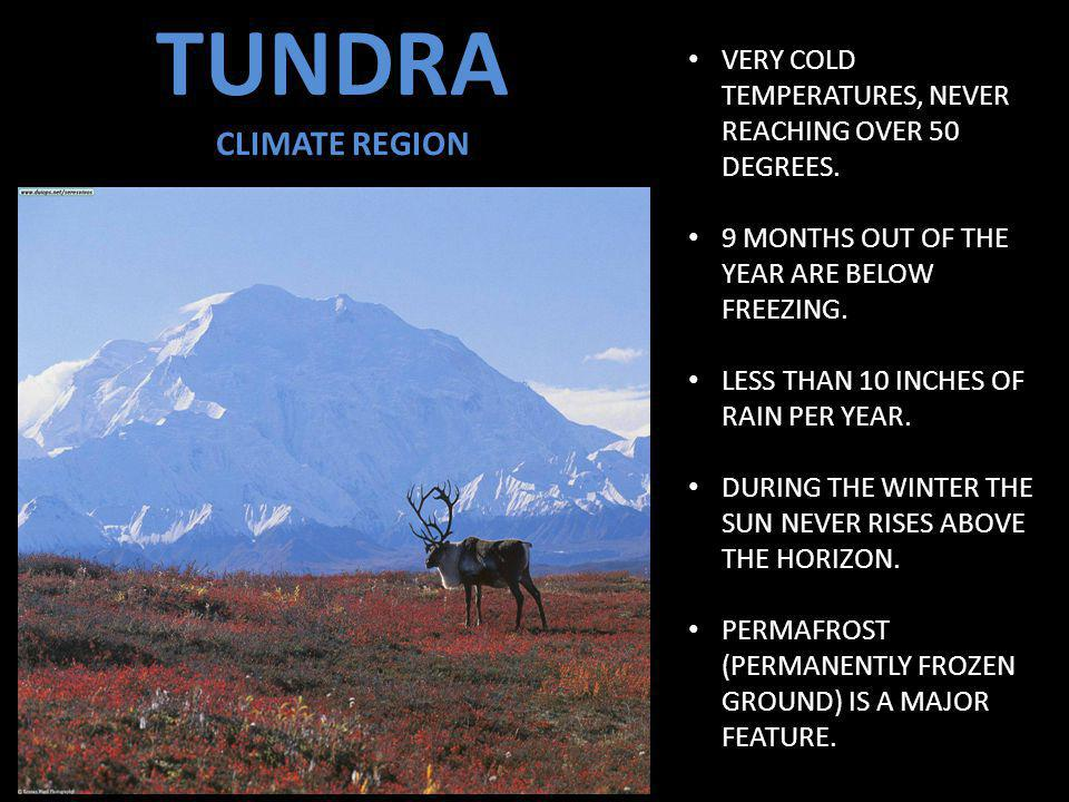 TUNDRA CLIMATE REGION VERY COLD TEMPERATURES, NEVER REACHING OVER 50 DEGREES.