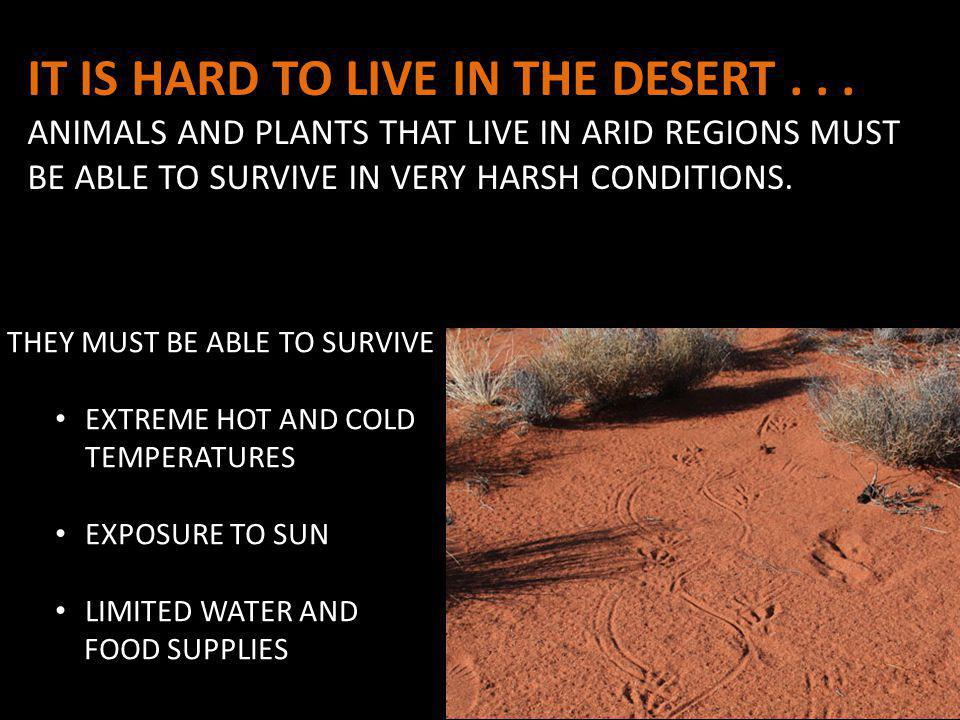 IT IS HARD TO LIVE IN THE DESERT...