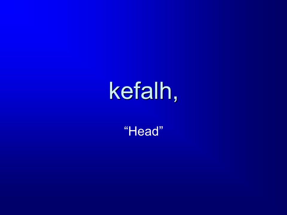 kefalh, Head