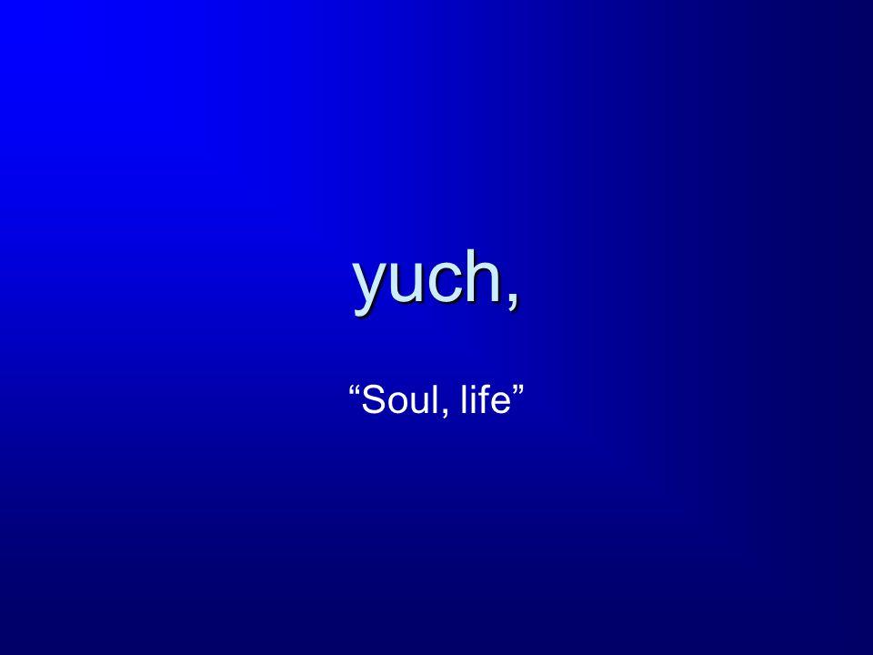 yuch, Soul, life