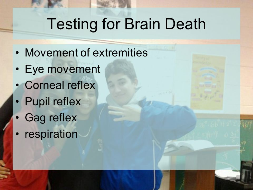 Testing for Brain Death Movement of extremities Eye movement Corneal reflex Pupil reflex Gag reflex respiration