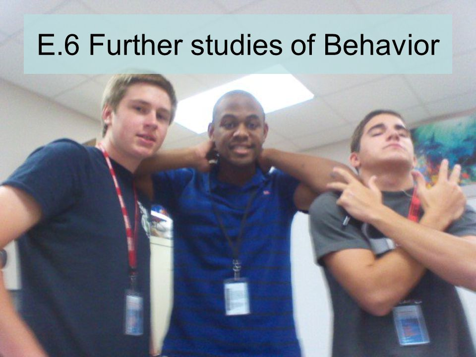 E.6 Further studies of Behavior