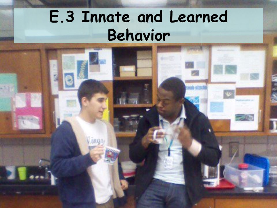 E.3 Innate and Learned Behavior