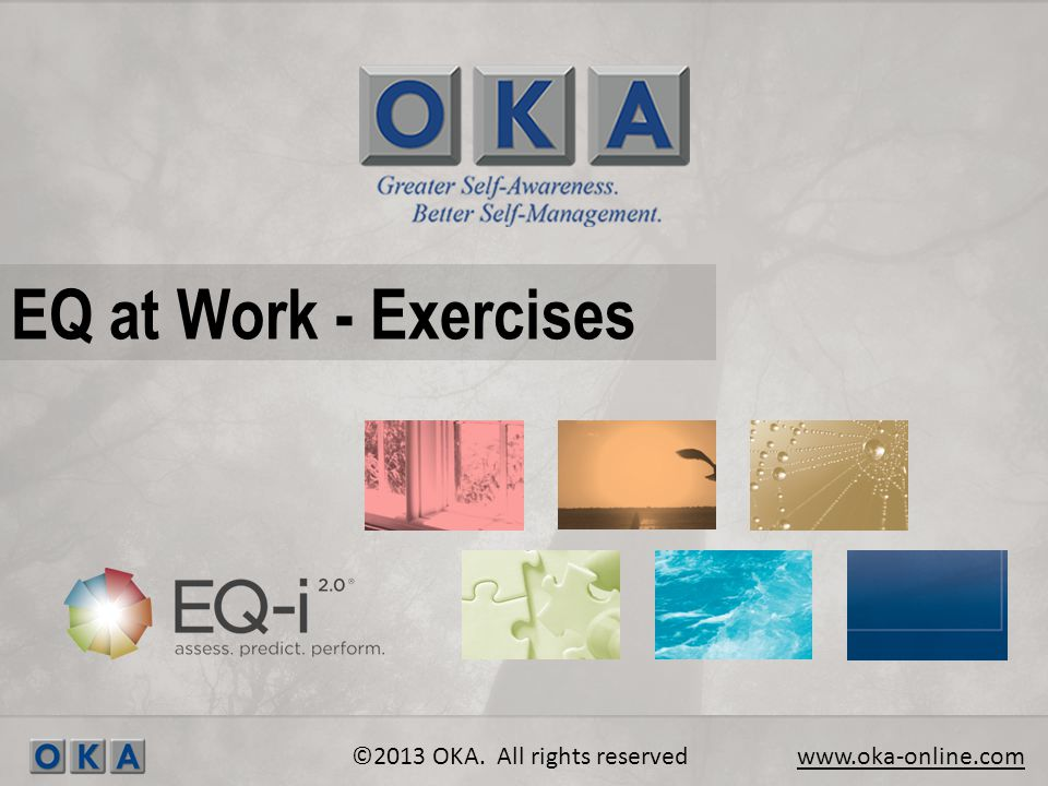 EQ at Work - Exercises ©2013 OKA. All rights reserved www.oka-online.com