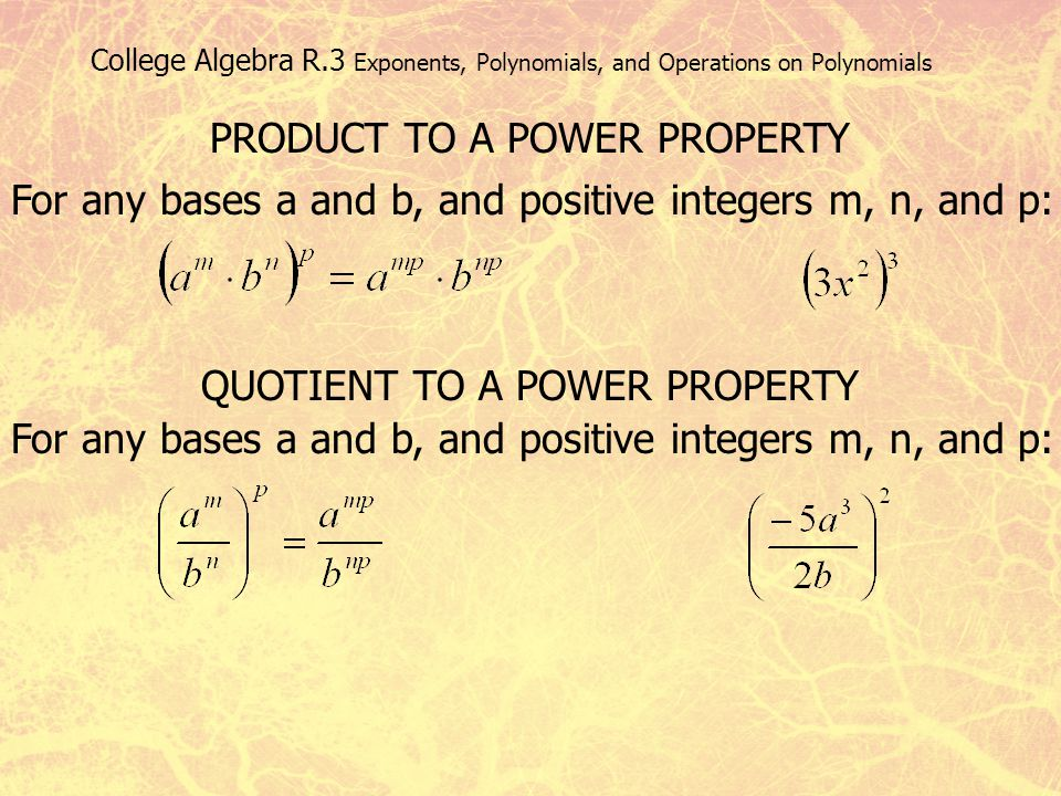 College Algebra R.3 Exponents, Polynomials, and Operations on Polynomials PRODUCT TO A POWER PROPERTY For any bases a and b, and positive integers m,