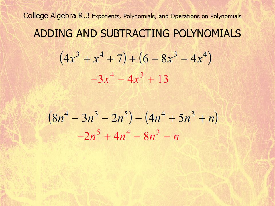 College Algebra R.3 Exponents, Polynomials, and Operations on Polynomials ADDING AND SUBTRACTING POLYNOMIALS