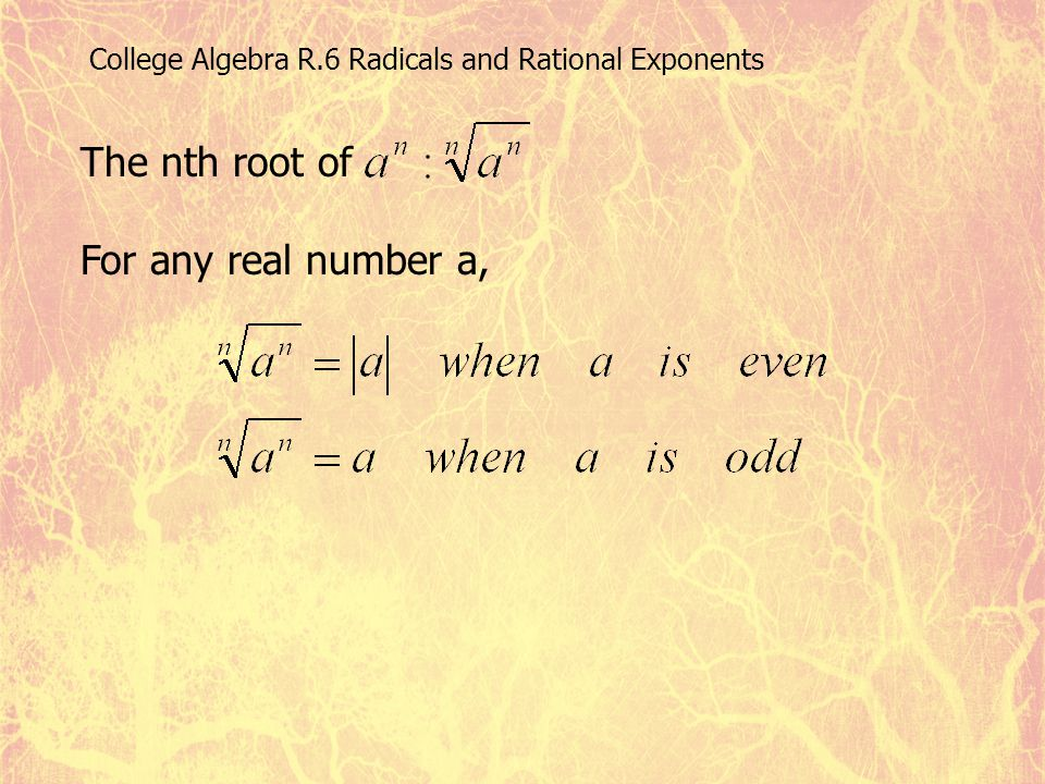College Algebra R.6 Radicals and Rational Exponents The nth root of For any real number a,
