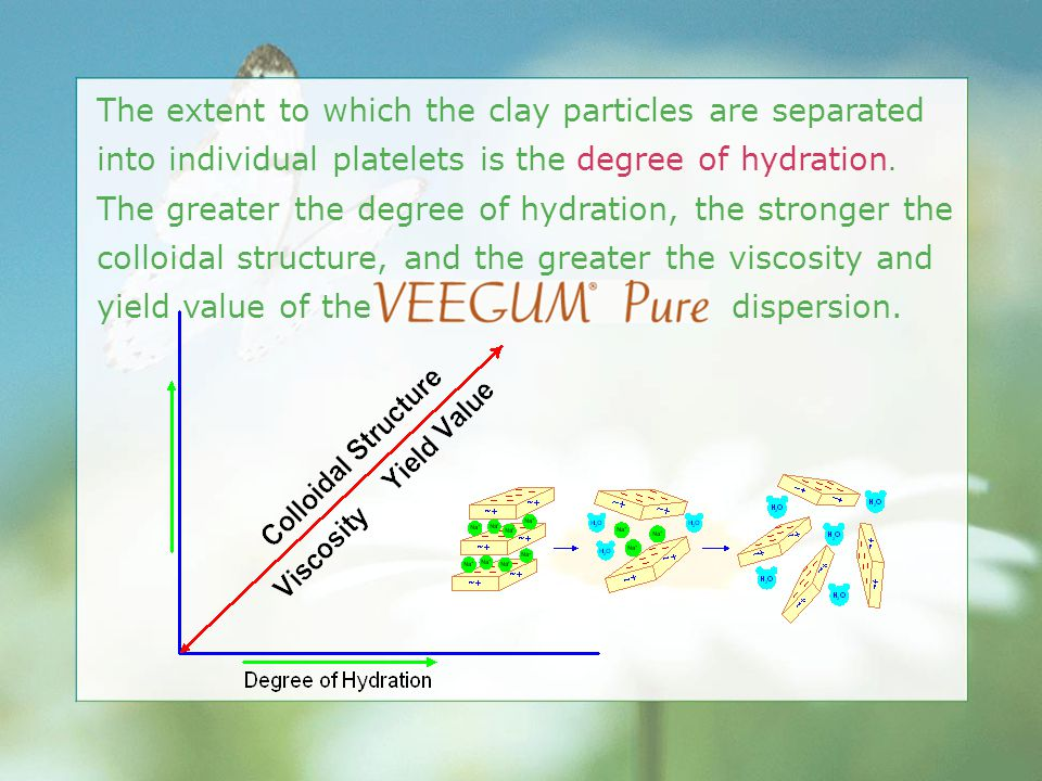 The extent to which the clay particles are separated into individual platelets is the degree of hydration. The greater the degree of hydration, the st
